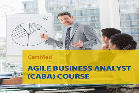 AGILE-business-analyst-professional-Training