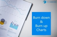 Burn Down and Burn up charts