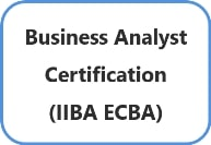 Business Analyst Certification With Investment Banking Domain
