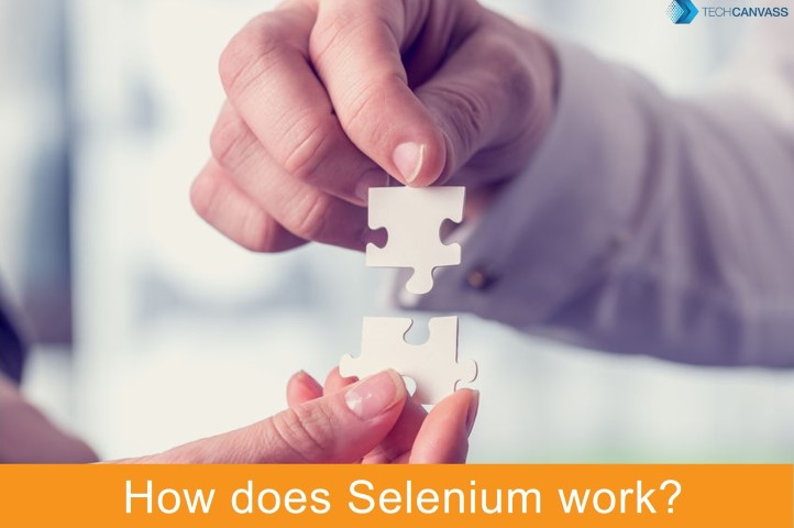 How does selenium work?